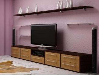 Мебель для гостиной с полочками  - Мебельная фабрика «Передовые технологии дизайна»