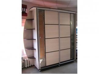 Стильный шкаф-купе Шк-10
