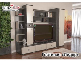 Гостиная Лидер - Мебельная фабрика «Элна»