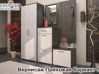 Прихожая Вернисаж вариант 5 - Мебельная фабрика «Элна»