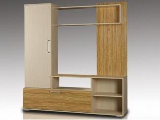 Шкаф многоцелевого назначения Оптима - Мебельная фабрика «Восток-мебель»