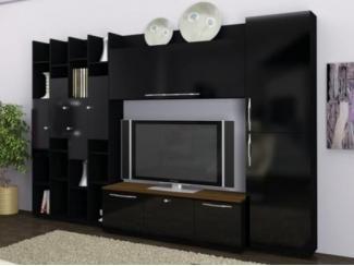 Целостная гостиная Кобра в черном цвете  - Мебельная фабрика «Фран»