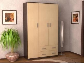 Шкаф Этюд 2 - Мебельная фабрика «Алсо»