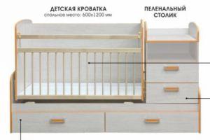 Кровать-трансформер Джуниор - Мебельная фабрика «Элегия»