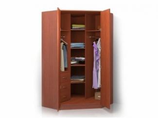 Шкаф распашной угловой ALISA-5 - Мебельная фабрика «Баронс»
