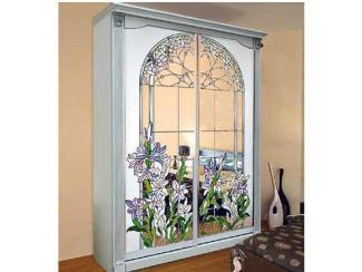 Шкаф-купе Цветы в окне