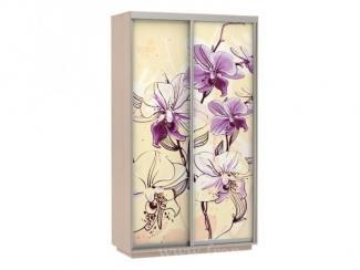 Шкаф-купе с фотопечатью  Цветы - Мебельная фабрика «Фран»