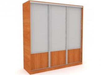 Шкаф-купе 7 - Мебельная фабрика «Балтика мебель»