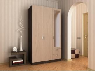 Распашной шкаф 1 - Мебельная фабрика «Гермес»