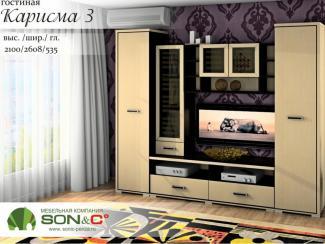 Гостиная «Карисма 3»
