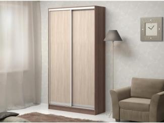 Шкаф-купе АДРИАНО-2 2-х дверный - Мебельная фабрика «Баронс»