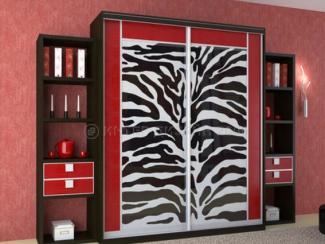 Шкаф-купе zebrano - Мебельная фабрика «Интер-дизайн 2000»