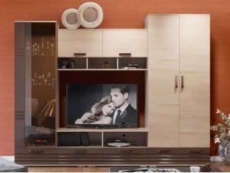 Невысокая гостиная со шкафом Паула - Мебельная фабрика «Уфамебель»