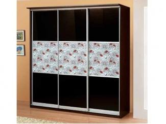 Шкаф-купе Божьи коровки  - Мебельная фабрика «Аджио»