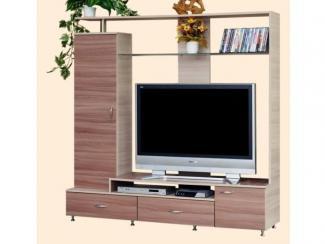 ТВ стойка 24 - Мебельная фабрика «ВиТа-мебель»