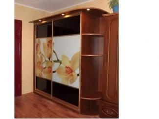 Шкаф-купе с фотопечатью  - Мебельная фабрика «Еврус»