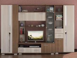 Гостиная стенка Дарси 1 - Мебельная фабрика «Ник (Нижегородмебель)»
