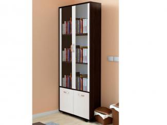 Шкаф 2-х дверный для книг Альба