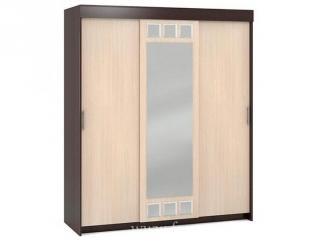 Большой шкаф-купе  - Мебельная фабрика «Фран»