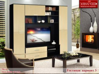 Гостиная стенка Мега вариант 3 - Мебельная фабрика «Элна»