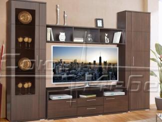 Гостиная стенка Плазма - Мебельная фабрика «Союз-мебель»