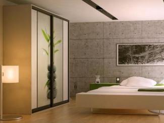 Шкаф - купе для спальни 1