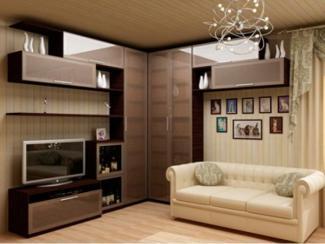 Гостиная стенка 4 - Мебельная фабрика «ДСП-России»