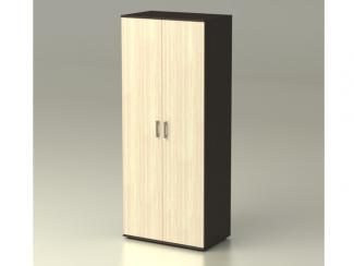 Шкаф Максим 2-х створчатый