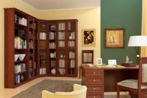 Шкаф библиотека - Мебельная фабрика «Ясень»