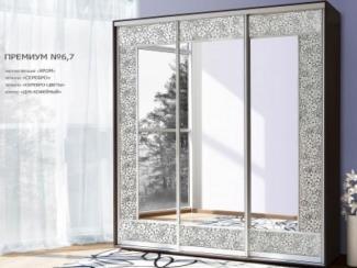 Шкаф-купе премиум №6,7 - Мебельная фабрика «Янтарь»