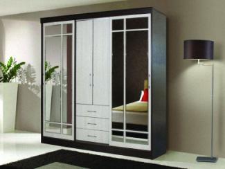 Шкаф-купе Тритон - Мебельная фабрика «Альбина»