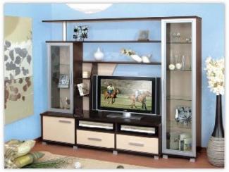 Гостиная стенка Э-2 - Изготовление мебели на заказ «Орион»