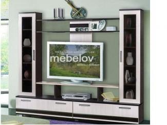 Мини-стенка 14 - Мебельная фабрика «МЕБЕЛов»