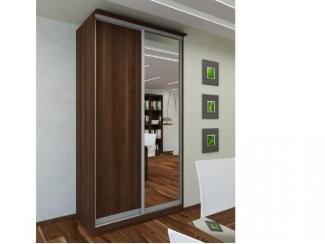 Шкаф-купе с зеркалом - Мебельная фабрика «Амира»