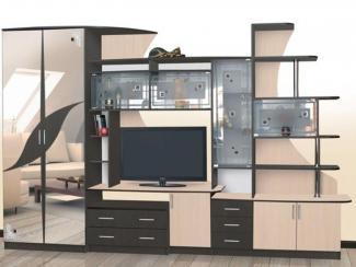 Гостиная стенка Гамма-5 - Мебельная фабрика «Северная Двина»