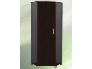 Шкаф распашной 4 - Мебельная фабрика «Кредо»