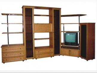 Гостиная стенка Ноктюрн-4 ЛДСП - Мебельная фабрика «Гамма-мебель»