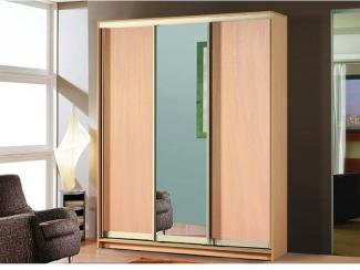 Шкаф-купе 2 - Мебельная фабрика «Азбука мебели»