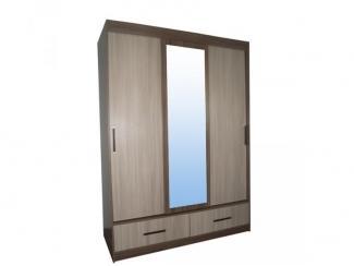 Шкаф-купе Дуэт - Мебельная фабрика «Мебель эконом»