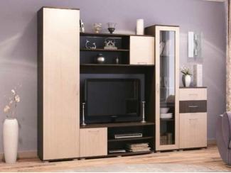 Простая мебель для гостиной  Элегия 2 - Мебельная фабрика «СМГ»