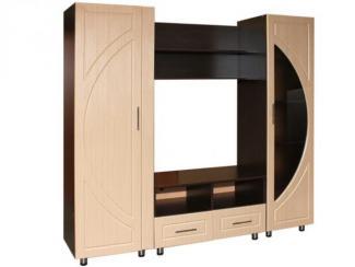 Гостиная стенка ТВ-9 - Мебельная фабрика «Грация»