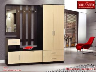 Прихожая Мега вариант 2 - Мебельная фабрика «Элна»