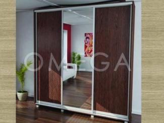 Шкаф-купе Омега 3дк3 - Мебельная фабрика «Омега»