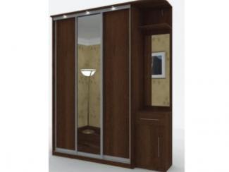 Шкаф-купе 7003 - Мебельная фабрика «Мебель НН»