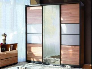 шкаф-купе  Премиум 2 - Мебельная фабрика «Регина»