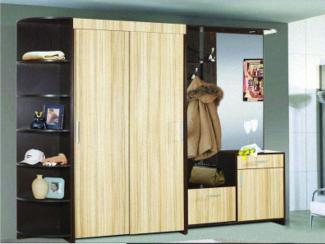прихожая Поли - Мебельная фабрика «Регина»