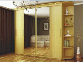 шкаф Эконом - Мебельная фабрика «Регина»