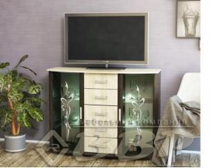 Комод под телевизор М-15 - Мебельная фабрика «ВВР»