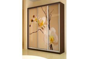 Шкаф-купе Орхидея - Мебельная фабрика «Д.А.Р. Мебель»