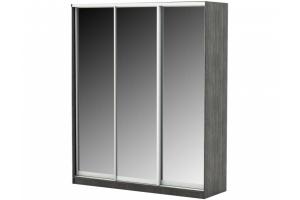 Шкаф-купе Меценат 3 Вариант 3 - Мебельная фабрика «Д.А.Р. Мебель»